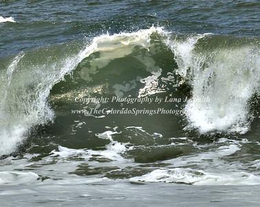 Wave 1 - Oregon