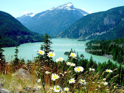 Cascades 119