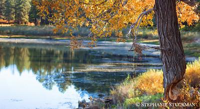 Joe Moore Reservoir