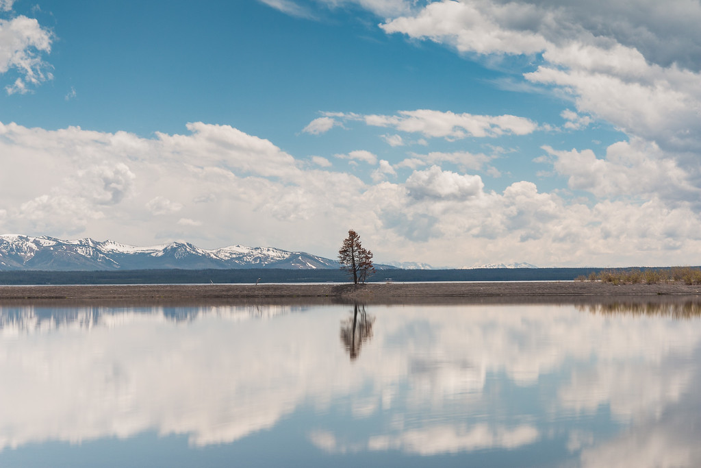 IMAGE: https://photos.smugmug.com/Scenery2/Yellowstone-and-Grand-Teton-NP/i-jjJjDwH/1/XL/IMG_0661-XL.jpg