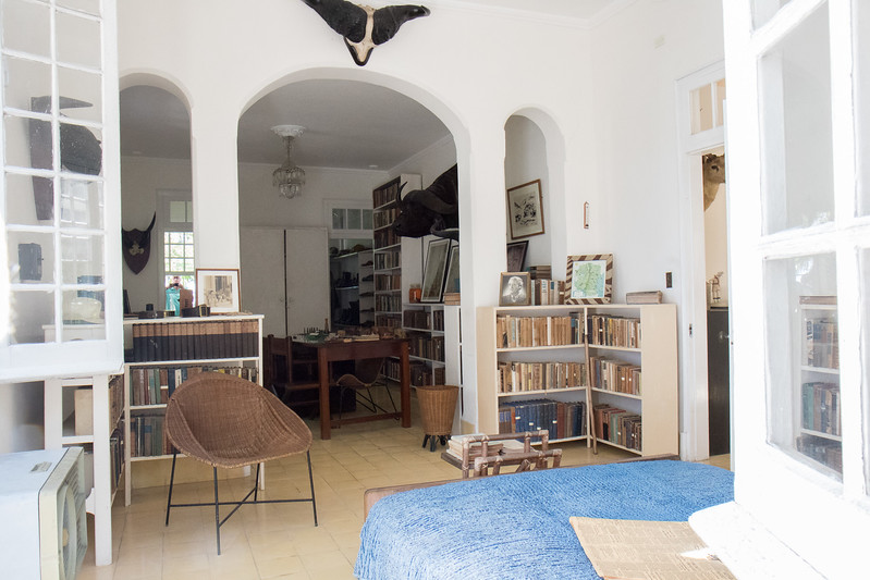 View of the interior showing a library and desk.