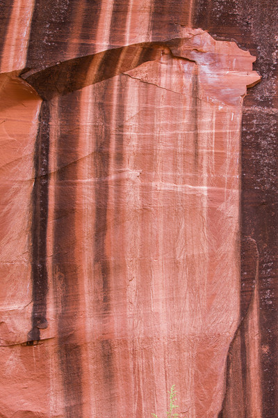 Canyon Wall Pattern I