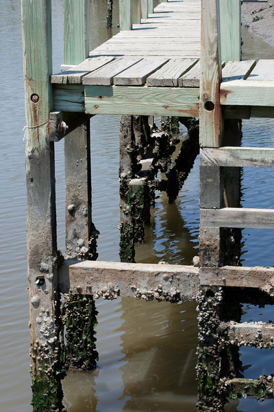 Pier with Barnacles II