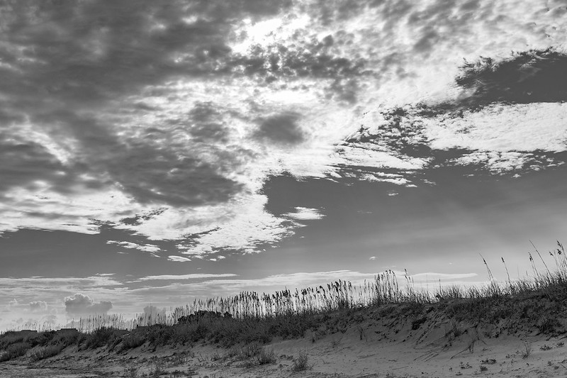 Backlit Scene at South Topsail Inlet