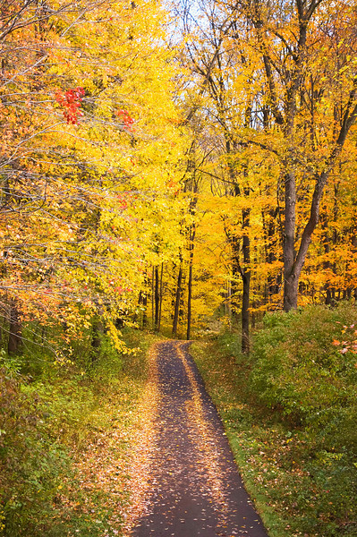 autumn bicycle trail at Goddard State Park