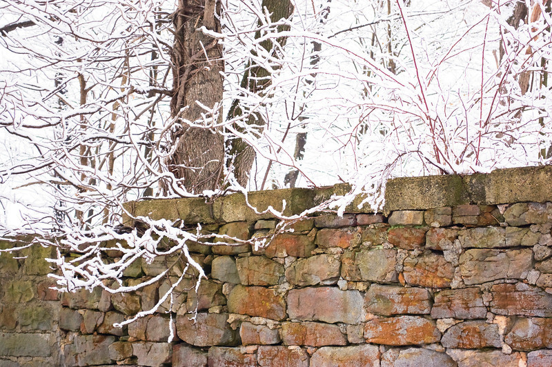 stone wall with snowy branches