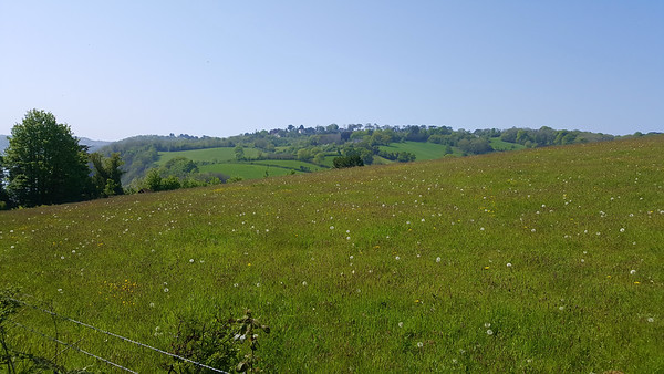 Looking towards Babbacombe  07/05/18