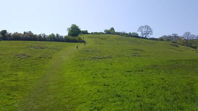 Ness Hill  07/05/18