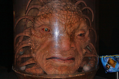 The Face of Boe