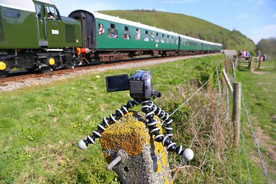 Gorilla Pod on a fence post at Corfe Castle Foot Crossing  08/05/16