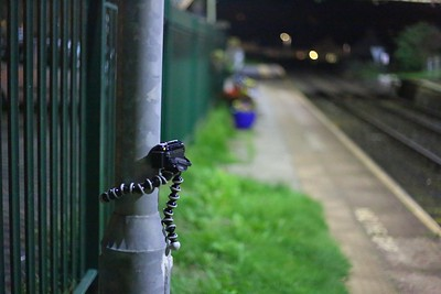 Gorilla Pod at Harrington  29/09/16