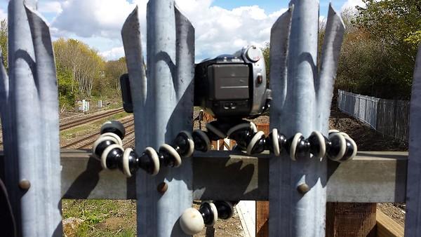 Gorilla Pod on a fence at Filton Abbey Wood  30/04/16