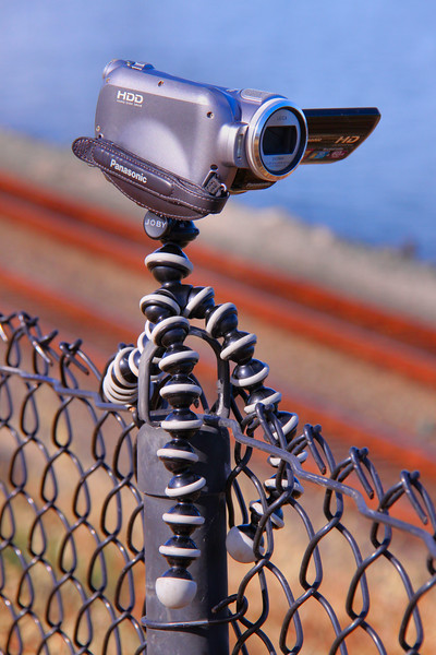 Gorilla Pod on the fence at Hercules<br /> <br /> 21/06/10