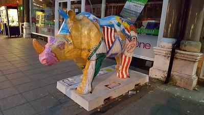 Paignton Rhino