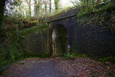 The old railway line at Lydford Gorge  16/11/19