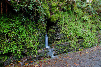 Lydford Gorge  16/11/19