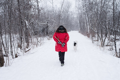 Mary with the dog stick, walking through Hawk Ridge. Duluth, MN #snow #winter #dog #forest #red