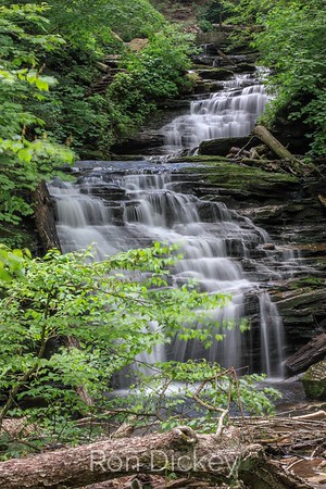Waterfall at Ricketts Glen State Park in Pennsylvania