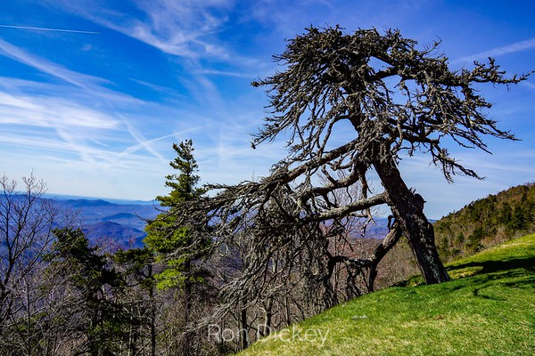 View from The Blue Ridge Parkway in North Carolina