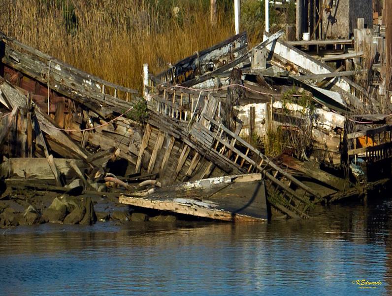 Two skipjacks left to rot