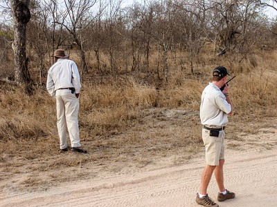 Sollly looking for Game and Adam in touch with others in the Sabi Sands area