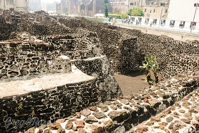 Part of the recoverd area at Templor Mayor