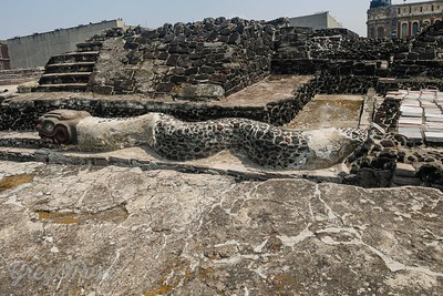 The snake in stone in Templor Mayor is likely to be Mayan rather than Aztec