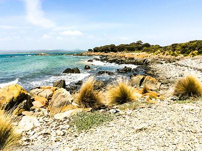 Hawley Beach . Tasmania