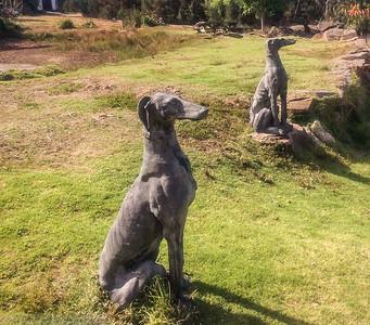 Dog Statues at Hawley House, Tasmania