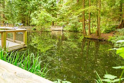 Pond at Kia'Palano