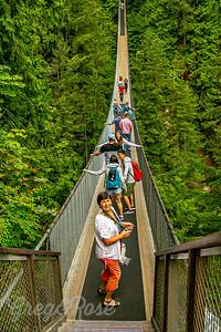 Kia'palano Main Suspension Bridge