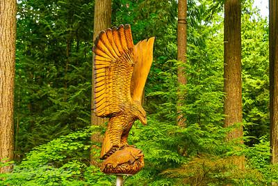 Raptor Carving