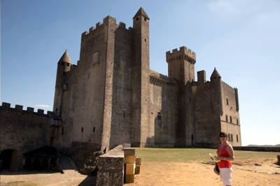Richard the Lyon's Hart French Castle
