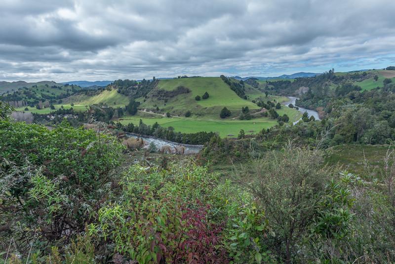 Near Waitaanga, New Zealand