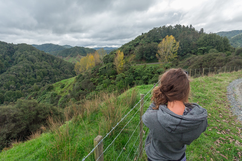 Near Waitaanga, New Zealand