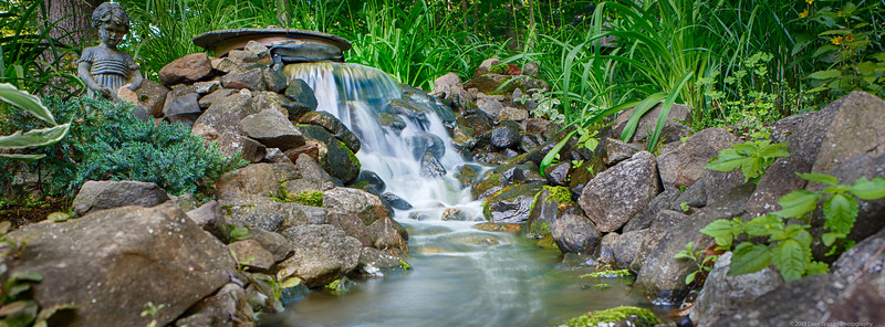Peaceful Backyard Water Garden
