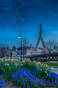 Boston Garden and Zakim from Charlestown