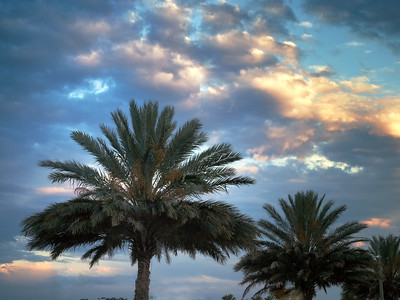 Sundown at Sanford Riverwalk Florida