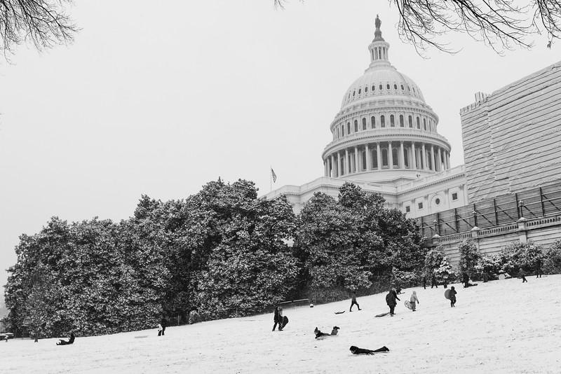 Washington, D.C. -- Sledders slide down the Hiil on Feb. 20, 2019. Photo by Eric Lee
