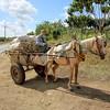 Farmer in a horsedrawn wagon along a highway, Cuba (2015)