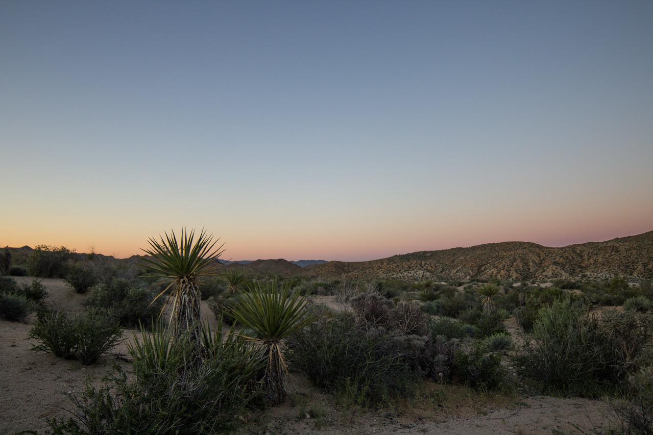 Sunrise at Cottonwood Campground.