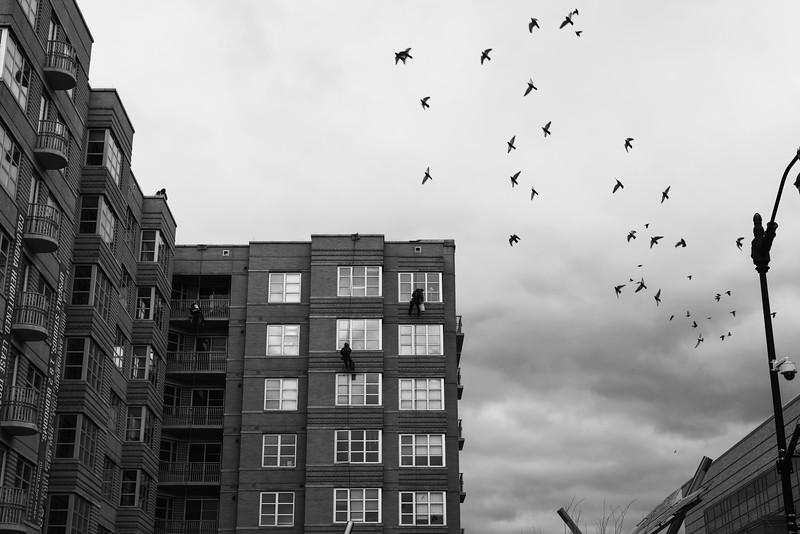 Washington, D.C. -- Photo by Eric Lee