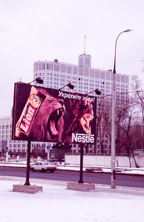 Russian lion