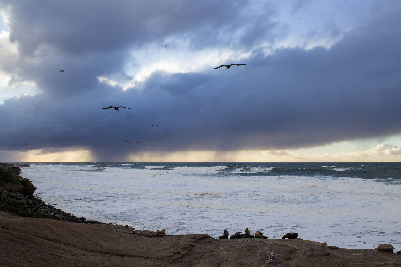 Winter storms from Boomer Beach.