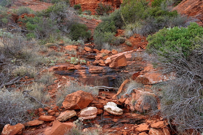 Teacup Mountain Trail, Seonda, Arizona (c) 2014