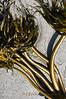 7-25-2011...  Seaweed Strands...
