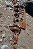 7-13-2010…  Long Ago I Fell Upon These Lands…<br /> <br /> There were two of these on this beach, both in-line sixes, both the same…  The remnants of a ship wreck?  Have the waves carried away all but the heaviest of the disaster?  One can only speculate…