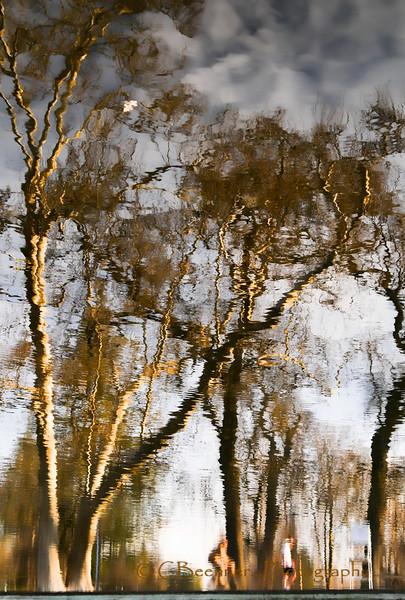 Fuzzy Reflections