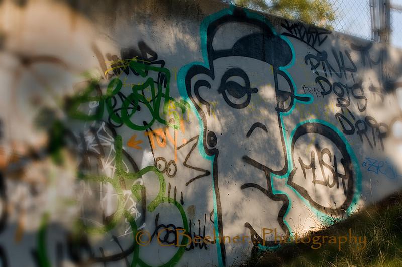 Graffiti In The Park