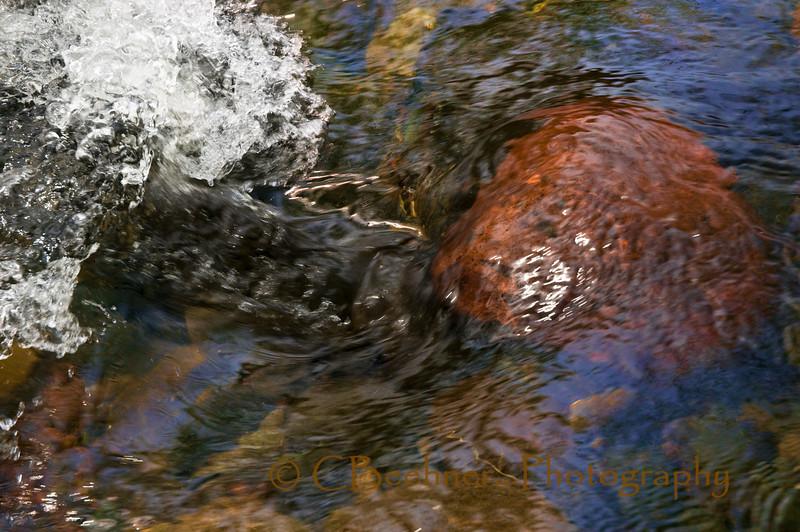 The Rock N Splash